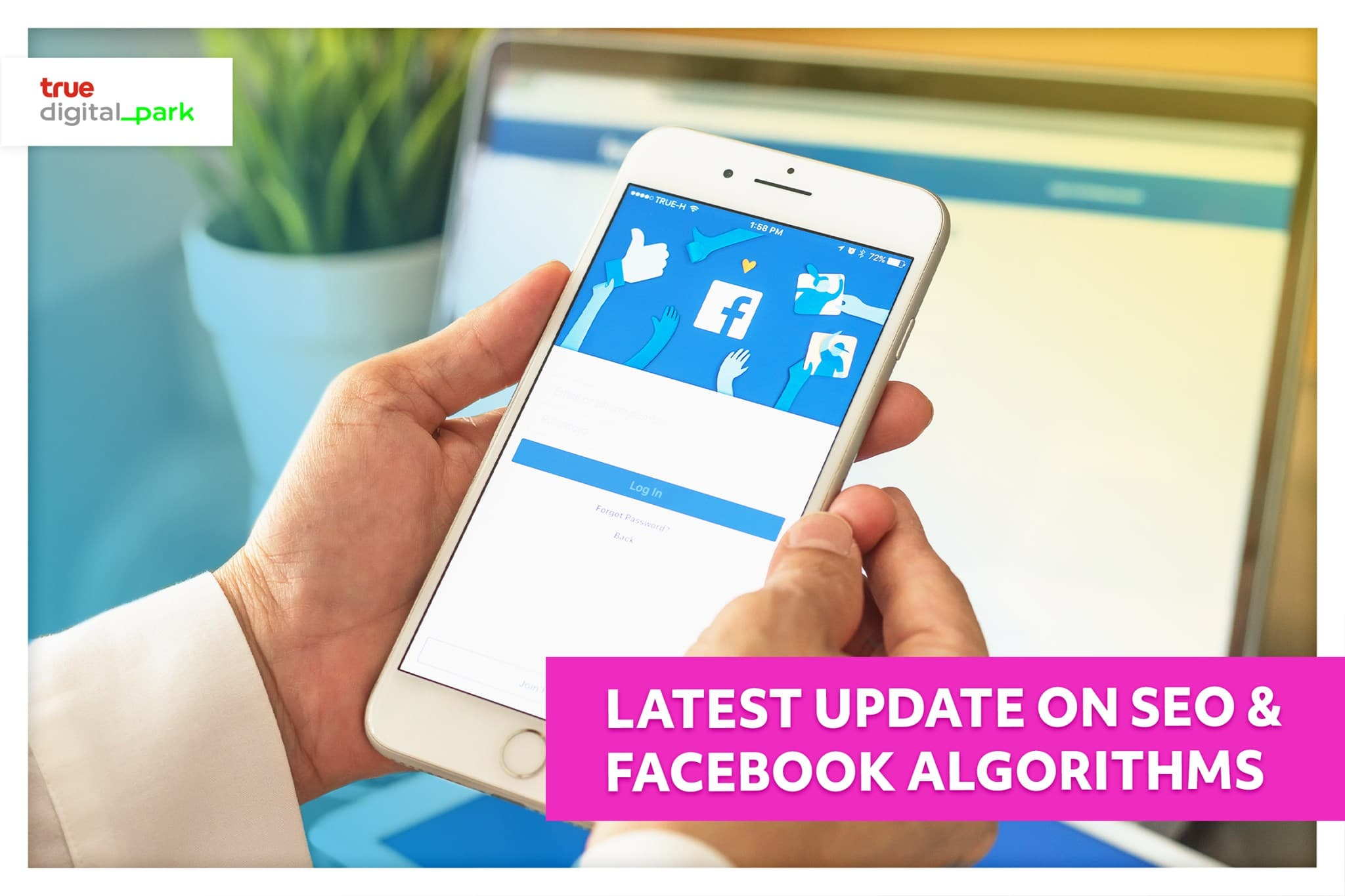 Latest update on SEO and Facebook algorithms